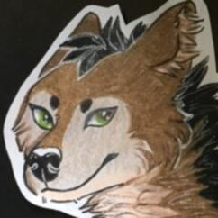 Profile picture of Senka