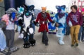 fursuit-romp-oct-13-2018-051