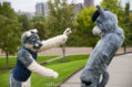 fursuit-romp-oct-13-2018-114