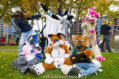 fursuit-romp-oct-13-2018-149
