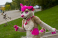 fursuit-romp-oct-13-2018-206