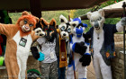 mnfurs-picnic-fursuit-a-group-of-characters