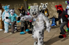fursuit-mnfurs-picnic-theres-the-alien