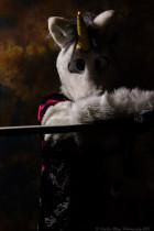 fursuit-photography-april-7-2013-104