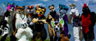 may-fursuit-photography-11-of-19