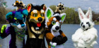 may-fursuit-photography-13-of-19