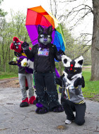mnfurs-fursuit-a-little-bit-of-rain