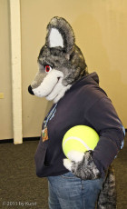 mnfurs-fursuit-keeping-this-ball