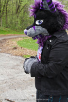 mnfurs-fursuit-walk-with-me