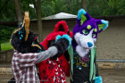 mnfurs-picnic-you-can-not-see-this