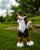 mnfurs-spring-2012-picnic-fursuit-are-you-saying