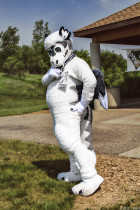 mnfurs-spring-2012-picnic-fursuit-do-you