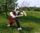 mnfurs-spring-2012-picnic-fursuit-from-the-side
