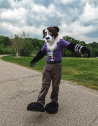 mnfurs-spring-2012-picnic-fursuit-hard-to-walk
