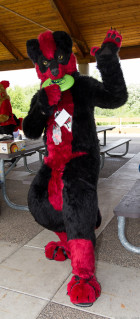 mnfurs-spring-2012-picnic-fursuit-hi-there