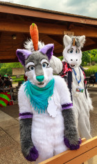 mnfurs-spring-2012-picnic-fursuit-honoarary-unicorn