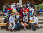 mnfurs-spring-2012-picnic-fursuit-im-taking-a-picture
