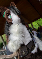 mnfurs-spring-2012-picnic-fursuit-maybe