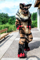 mnfurs-spring-2012-picnic-fursuit-not-any-closer