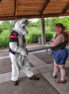 mnfurs-spring-2012-picnic-fursuit-not-impressed
