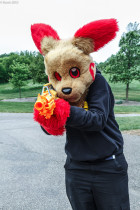 mnfurs-spring-2012-picnic-fursuit-not-the-way