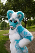 mnfurs-spring-2012-picnic-fursuit-oh-please