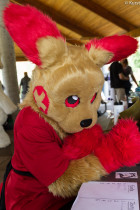 mnfurs-spring-2012-picnic-fursuit-should-i-say