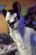 fursuit-bowling-oct-9-2015-234