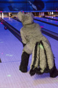 fursuit-bowling-oct-9-2015-271