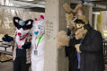 fursuit-romp-dec-6-2015-03