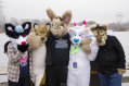 fursuit-romp-dec-6-2015-30