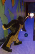 fursuit-bowling-jan-1-2016-142