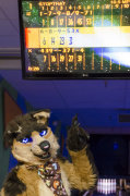 fursuit-bowling-jan-1-2016-169