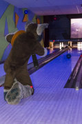 fursuit-bowling-jan-1-2016-179