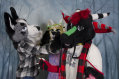 mnfurs-holiday-party-2016-071