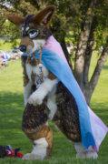 1786_mnfurs-spring-picnic-may-14-2016-873